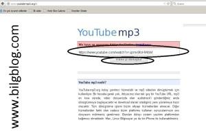 mp3 indir2