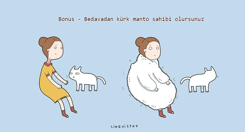 kedilerle-yaşamak-patiliyo-19