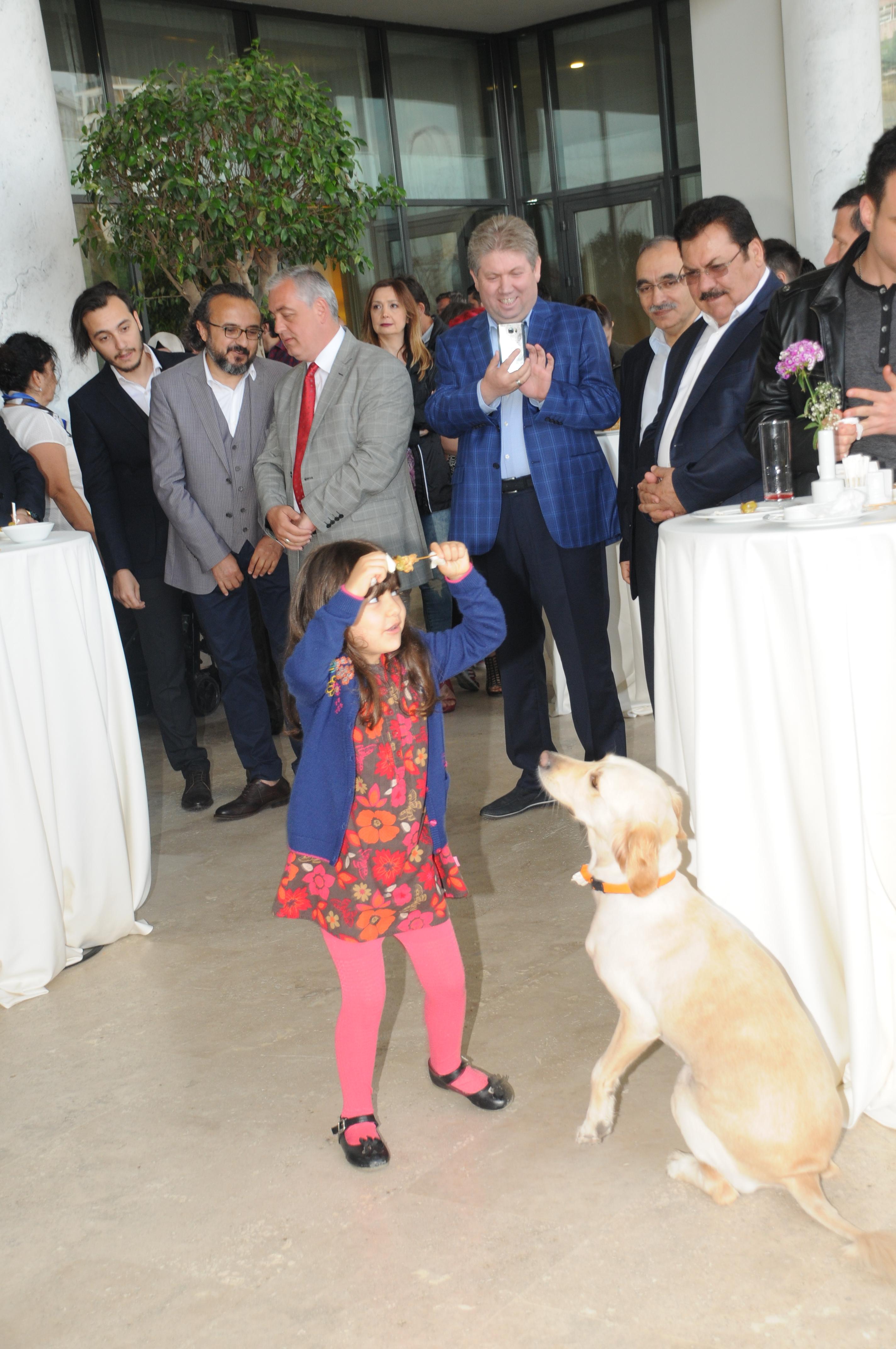Filmin özel gösterimi öncesi konuklar ile bir araya gelen sokak köpekleri Bal ile Betty en çok çocuk hayranlarının ilgisini çekti. Kokteyl boyunca İstanbul Vialand Palace Hotel'in terası Patilerin ve çocukların koşuşturma alanına döndü. Konukların ve çocukların yoğun ilgisiyle karşı karşıya kalan köpeklerin mutluluğu yüzlerinden okunuyordu.